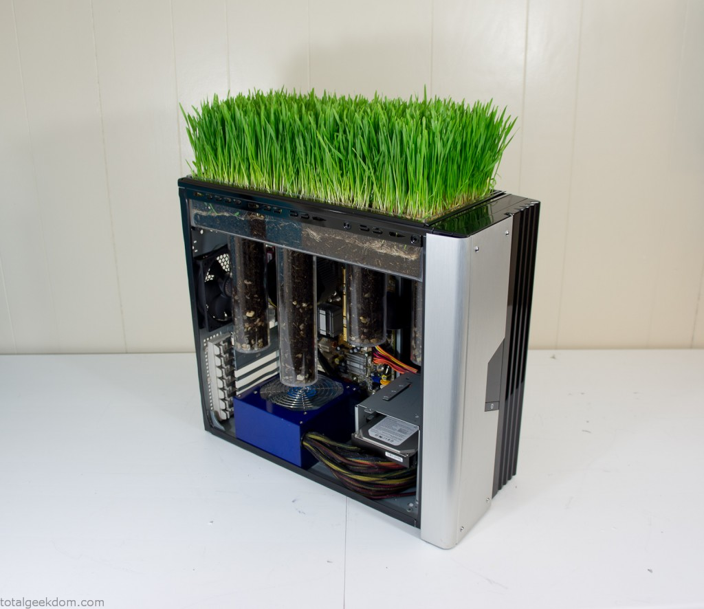 Computer Grass Complete